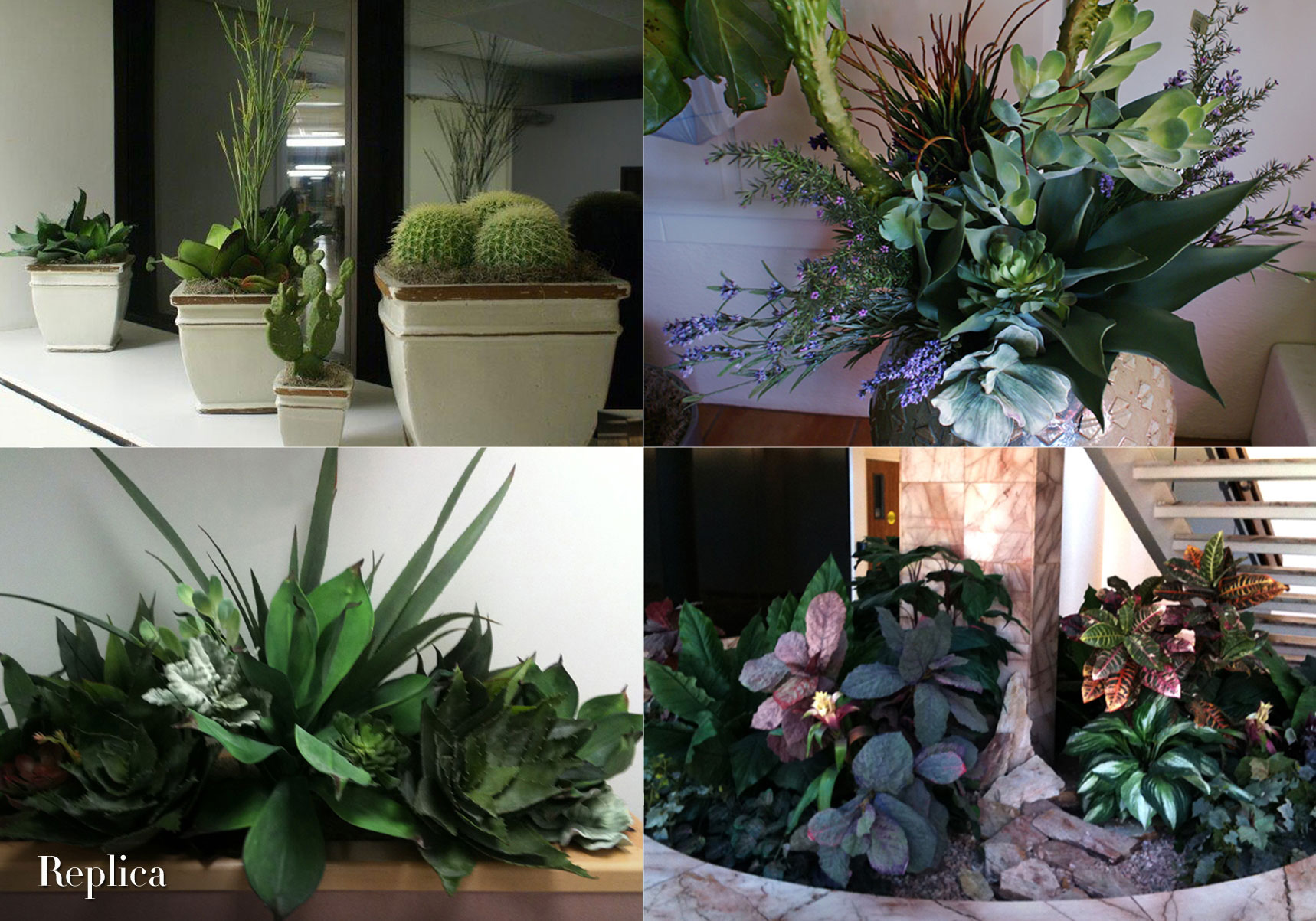 Special projects lulu pokinghorn the plant lady for Indoor plant maintenance